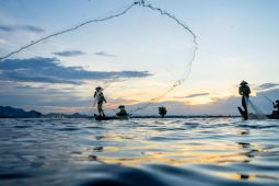 A river running out of time – the mighty Mekong reduced to a trickle